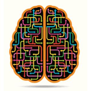 Rewire your bipolar brain