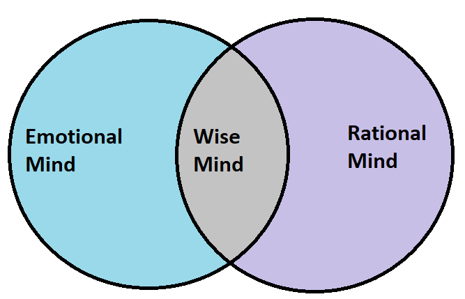 The Wise Mind Diagram for Bipolar Disorder